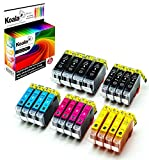 Koala 20 Druckerpatronen kompatibel für Canon PGI-5 CLI-8 PGI5 CLI8 für Canon Pixma IP4200 IP4300 IP5200 IP4500 IP5200R IP5300 MP500 MP510 MP600 MP600R MP800 MP800R MP810 MP830 4*BK 4*PBK 4*C 4*M 4*Y