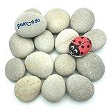 pamindo Steine zum Bemalen & Dekorieren, groß rund & handverlesen - Set mit 50-80 mm großen Kieselsteinen für Bunte Malerei & Dekoration [hellgrau/beige]