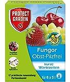 PROTECT GARDEN Fungor Obst-Pilzfrei (ehem. Bayer Garten Teldor), schnelle Wirkung gegen Pilzkrankheiten wie Grauschimmel und Monilia an Obst, Portionsbeutel, 30 g