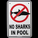 SW Treasure Gurus No Sharks in Swimming Pool Warnschild