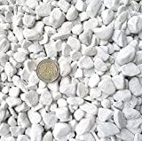 Doubleyou Geovlies & Baustoffe 1 kg Carrara Kies - Marmorkies weiß - Körnung 18-25 mm