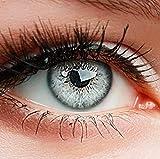 """ELFENWALD farbige Kontaktlinsen ohne Stärke, Produktreihe """"INTENSE', ein paar weiche Farblinsen mit Aufbewahrunsbehälter, natürlicher Look GRAU-WEISS/ICY GRAU"""