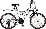 20' 20 Zoll Kinderfahrrad MTB Mountainbike Vollgefedert Kinder Fahrrad Rad Bike Jugendfahrrad Viper ROT Weiss TYT19-011