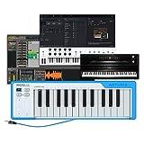 Arturia MicroLab Blau – Kompakte 25er USB-Controller-Tastatur