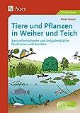 Tiere und Pflanzen in Weiher und Teich: Basisinformationen und Aufgabenblätter für drinnen und draußen (3. und 4. Klasse): Basisinformationen und ... für drinnen und draußen - 3. / 4. Klasse