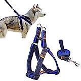 Ambielly Pet Harness, Jean Hund führt No-Pull Hund/Katze-Leine mit Schnellverschlüssen Dog Sicherheitsgurt Cowboy-Bügel-Seil-Kette (M, Blue)