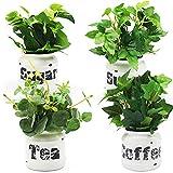 wooloow Mini Green Premium Kunstpflanze im Topf   künstliche Pflanzen mit wasserdicht Vintage Keramiktöpfe für Innen und Aussen   süß Dekoration für Wohnzimmer,Tischdeko,Küche,Badezimmer,Balkon