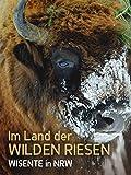 Im Land der wilden Riesen - Wisente in NRW