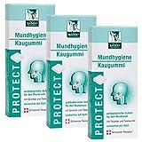 BADERs PROTECT Mundhygiene Kaugummi aus der Apotheke. Antibakterieller Schutz für den Mundraum mit Teebaumöl, Grüntee und Xylit. 3 x 20 Kaugummi-Quadrate