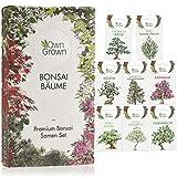 Bonsai Samen Set: Premium Bonsai Starter Kit mit 8 Sorten Bonsai Saatgut – Bonsai Anzuchtset zum Bonsai Züchten für den Mini Garten und Zen Garten, Bonsai Baum Samen Set mit Bonsai Seeds von OwnGrown