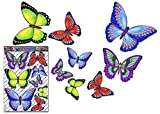 JAS Stickers® Schmetterling Tier Auto Aufkleber - Mehrfarbig - Vinyl große Aufkleber pack für...