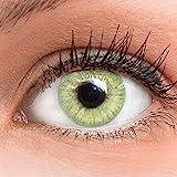 GLAMLENS Jasmine Light Green Grün + Behälter   Sehr stark deckende natürliche grüne Kontaktlinsen farbig   farbige Monatslinsen aus Silikon Hydrogel   1 Paar (2 Stück)   DIA 14.00   ohne Stärke