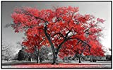 Ecowelle Infrarotheizung mit Bild | 900 Watt | 120x74x3cm | Infrarot Heizung| | Made in Germany | d 75 roter Baum