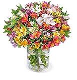 33 Inkalilien (Alstroemerie), 200 Blüten, Schnittblumen, farbenfrohe Auswahl, 7-Tage-Frischegarantie, perfekte Geschenkidee, versandkostenfrei bestellen