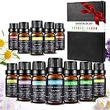 Ätherische Öle Set, Aiemok 100% Naturreines 10ml Ätherische Öle Geschenk-Set Ätherisches Öl Aromatherapie Duftöl, Aromatherapie Öle Geschenkset für Diffuser, Luftbefeuchter, Massage-und Haarpflege