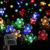 ITICdecor Solar Lichterkette Aussen 7M 50 LED Blumen Lichterkette Außen 8 Modi Beleuchtung Garten Wasserdicht für Garten, Weg, Terrasse, Zaun Dekoration (Bunt)