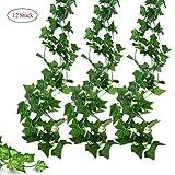 Deruxan Künstliche Efeugirlanden 12 Stück  Efeu Hängend Girlande Ivy Leaves Kunstpflanze mit 80 Blatt zum Aufhängen an der Wand, Balkon, Zaun, Hochzeit, Zu hause, Party, Garten (2.2M)