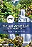 Sinnliche Wanderungen im Schwarzwald: Quellen, Bäche, Wasserfälle (Mit Geist und Füßen)