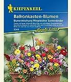 Balkonkasten-Blumenmix'Pflegeleichte Sonnenkinder',1 Portion