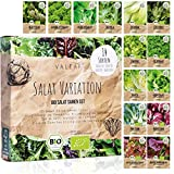 BIO Salat Samen Set - 14 Sorten Salatsamen aus biologischem Anbau I samenfestes Salat Saatgut I Bio Salat Set für Balkon, Garten und Hochbeet I 14er Saatgut Gemüse inkl. Gemüsesamen alte Sorten