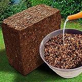 Kokos Husk Chips - Alternative zu Rindenmulch - ergibt nach Aufquellen ca. 45 Liter Mulch Material - Lieferung als leichter & platzsparender 5 kg Ziegel - Bodensubstrat für Terrarium, Orchideen etc.