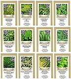 exotic-samen Saatgutsortiment Saatgut Sortiment - Kräuterbeet - 12 Sorten - 1250 Samen, grün