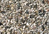Europet Bernina 257-110638 Aquariengrund Kies, 3-6mm, 5 kg, hell