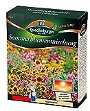 Sommerblumenmischung (ohne Gräser) NEU