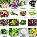 Gartengemüse Pflanzen Samen Set   Saatgut und Anzuchtset mit 16 Gemüse Sorten und 445 Pflanzensamen aus Portugal   100% Natur Saat (Keine Chemie/künstliche Wachstums-Helfer)