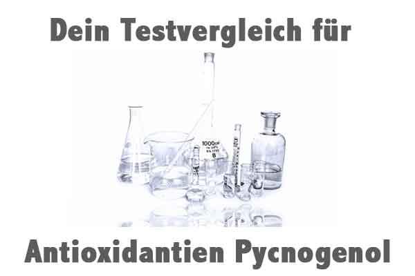 Antioxidantien Pycnogenol