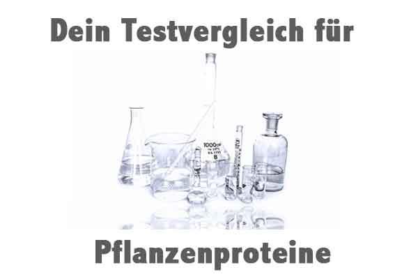 Pflanzenprotein