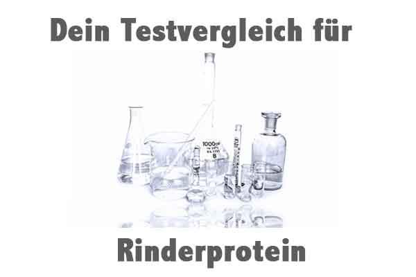 Rinderprotein