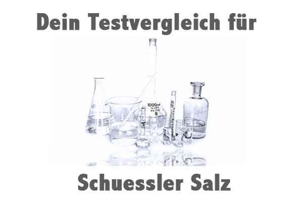Schuessler Salz