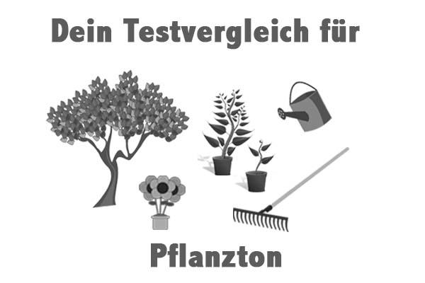 Pflanzton