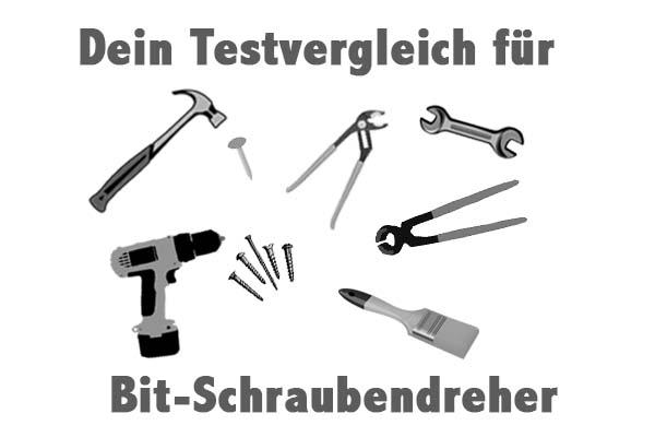 Bit-Schraubendreher