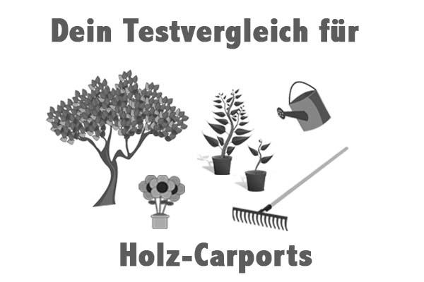 Holz-Carports