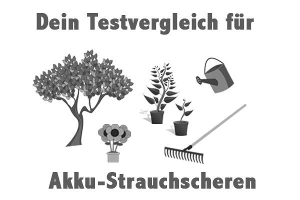 Akku-Strauchscheren