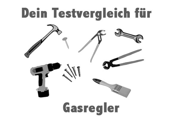 Gasregler