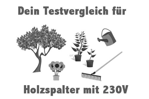 Holzspalter mit 230V