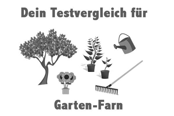 Garten-Farn