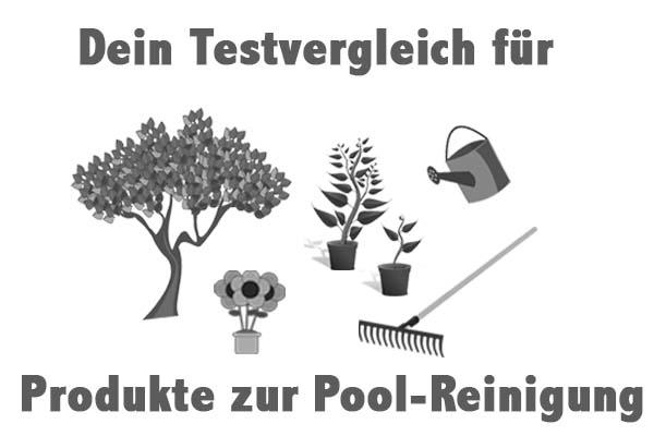 Produkte zur Pool-Reinigung