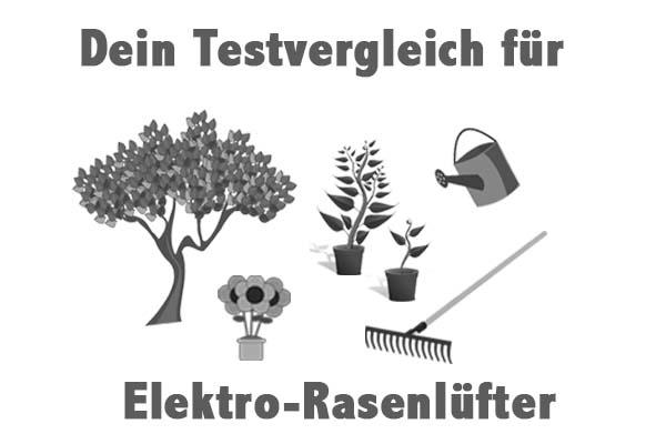 Elektro-Rasenlüfter