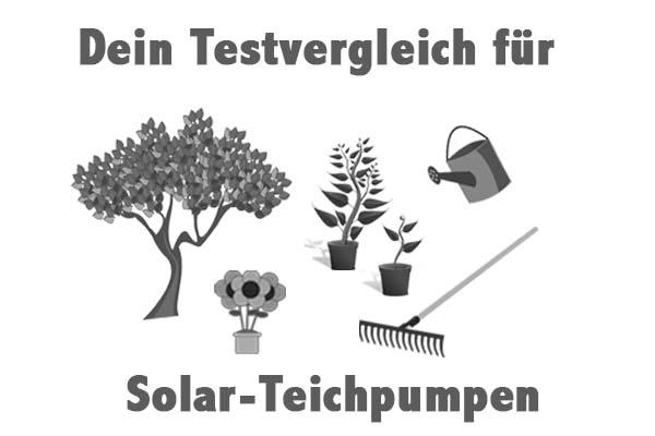 Solar-Teichpumpen