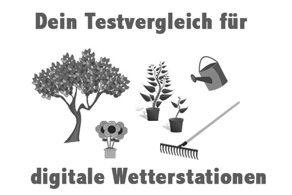 digitale Wetterstationen
