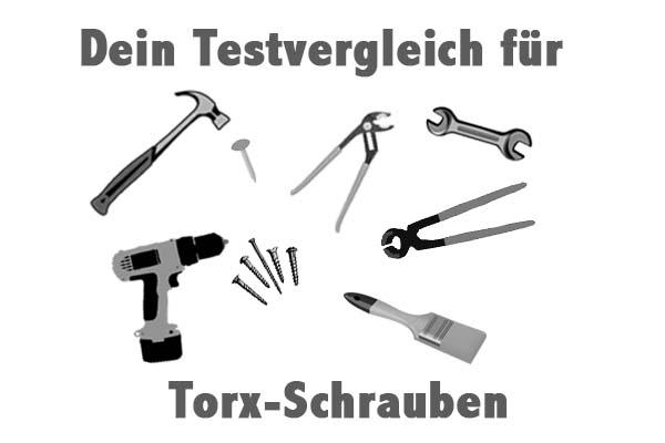 Torx-Schrauben