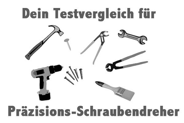 Präzisions-Schraubendreher