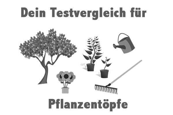 Pflanzentöpfe