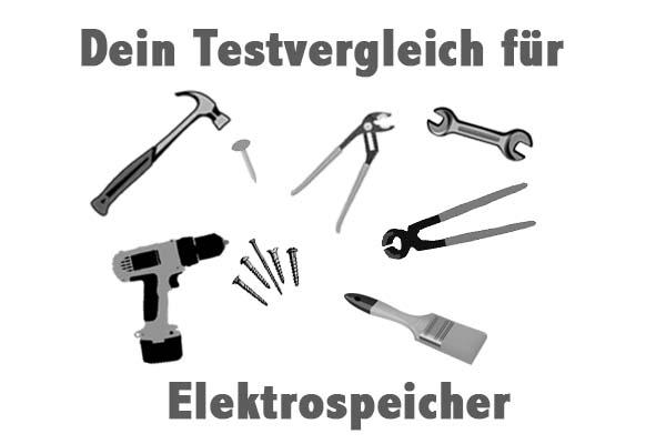 Elektrospeicher
